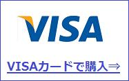 FC2ポイントをVISAカードで買う方法