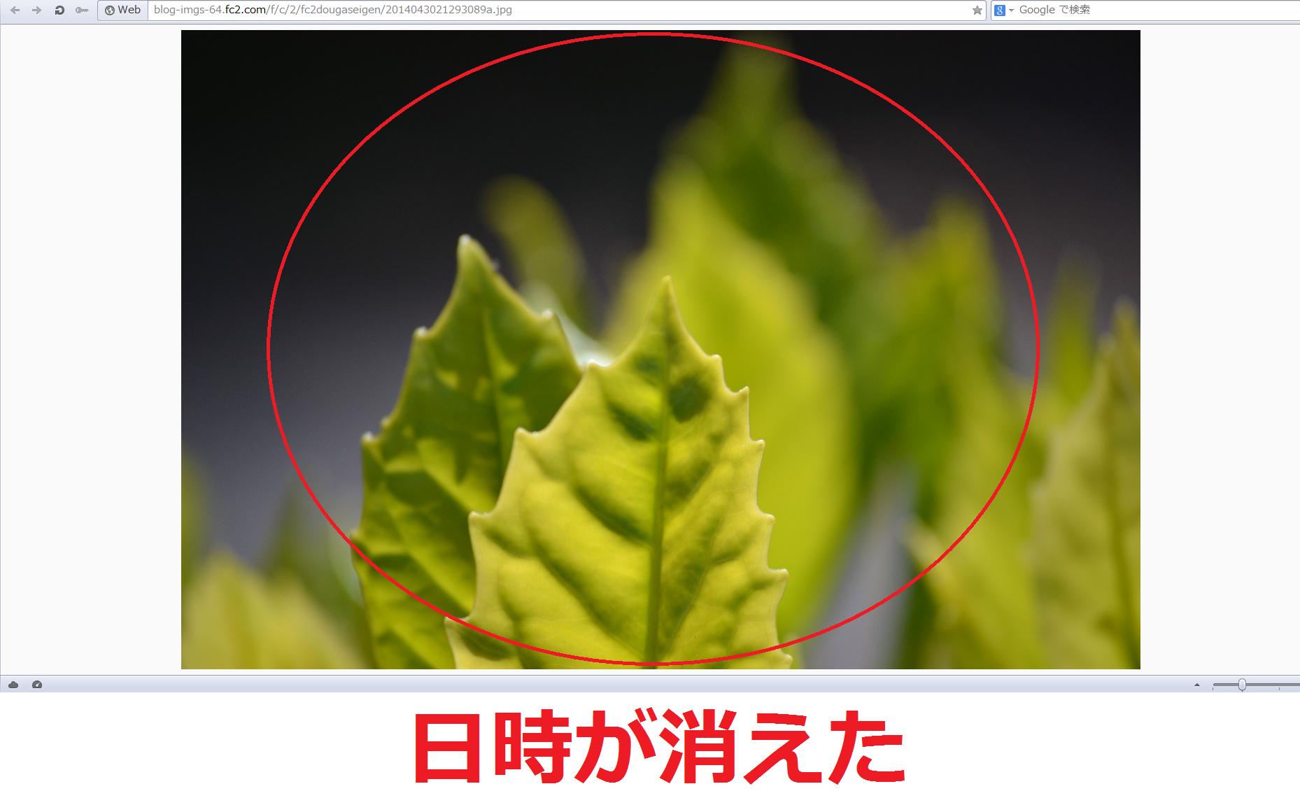 FC2ブログの写真の登録日時を非表示にする方法5