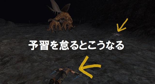 ff11baknawa02.jpg