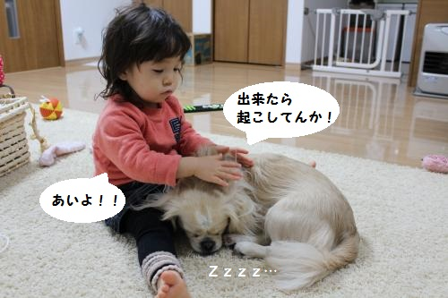IMG_0445_convert_20151228222858.jpg