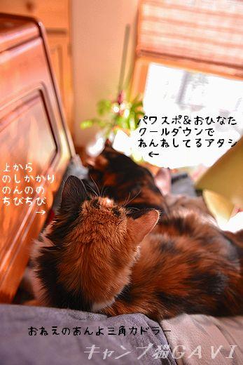 160108_0306.jpg