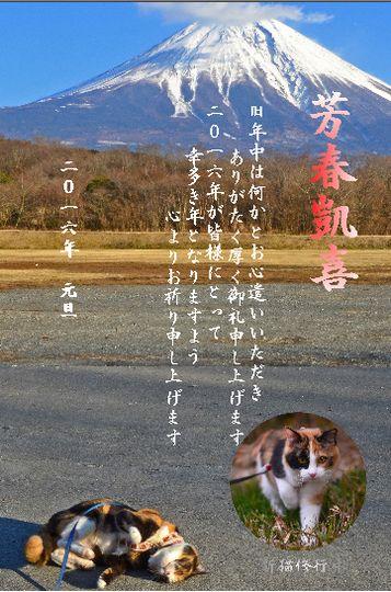 1601_cart1.jpg