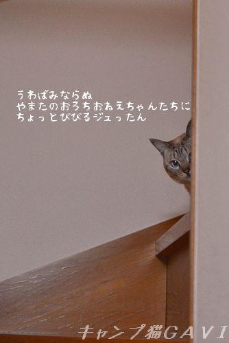 160211_1380.jpg