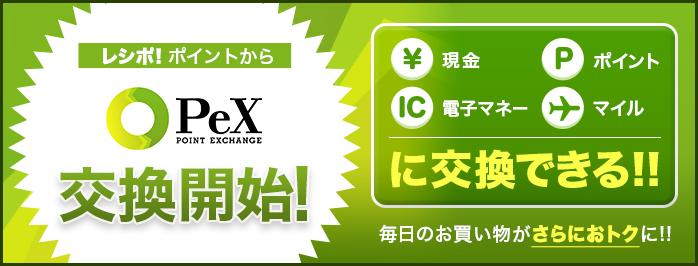 campaign_pex_mainimg.jpg