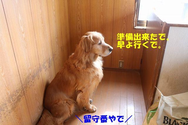 IMG_6533.jpg