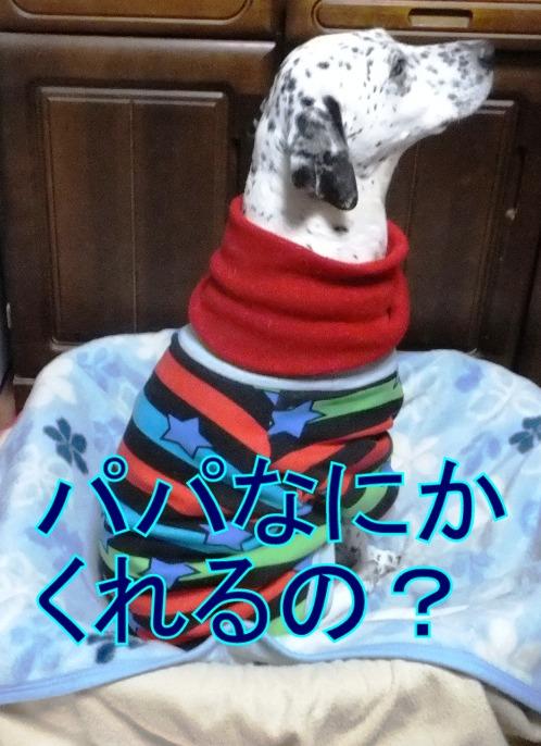 2016_0207_223855.jpg