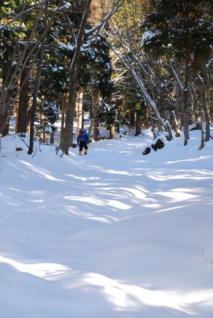 雪の積もった登山道_トレースなし