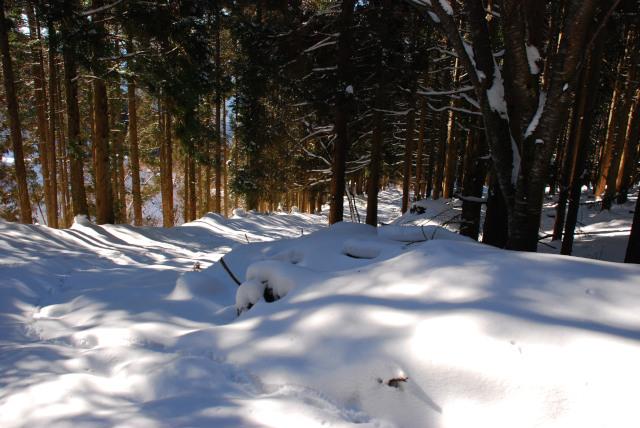 雪の上を歩く先行者