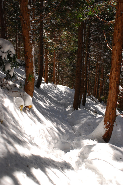 雪に埋まった登山道