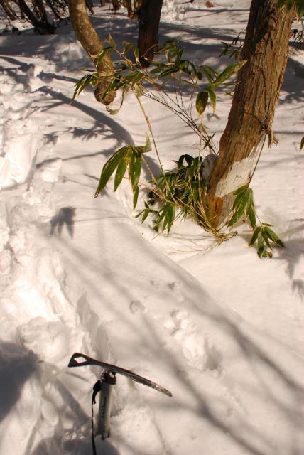 雪に立てたピッケル