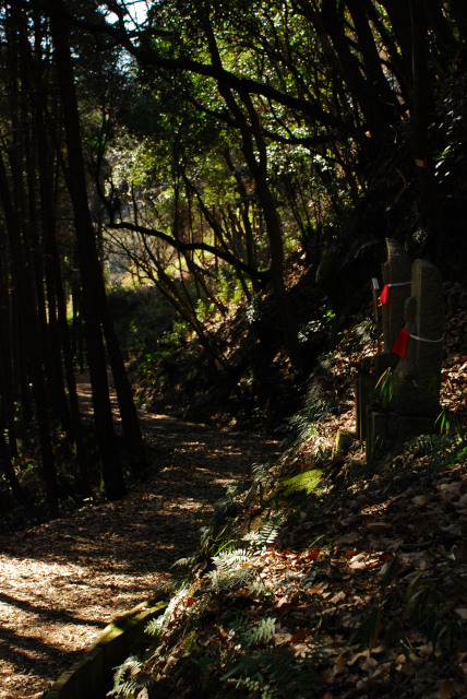 矢田丘陵_縦走路から矢田寺へ下り