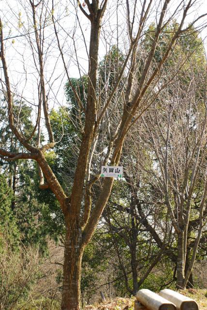 矢田峠の山頂標識