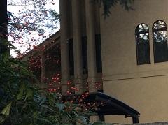 立教女学院の風景1