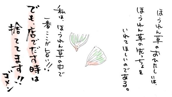 img321.jpg
