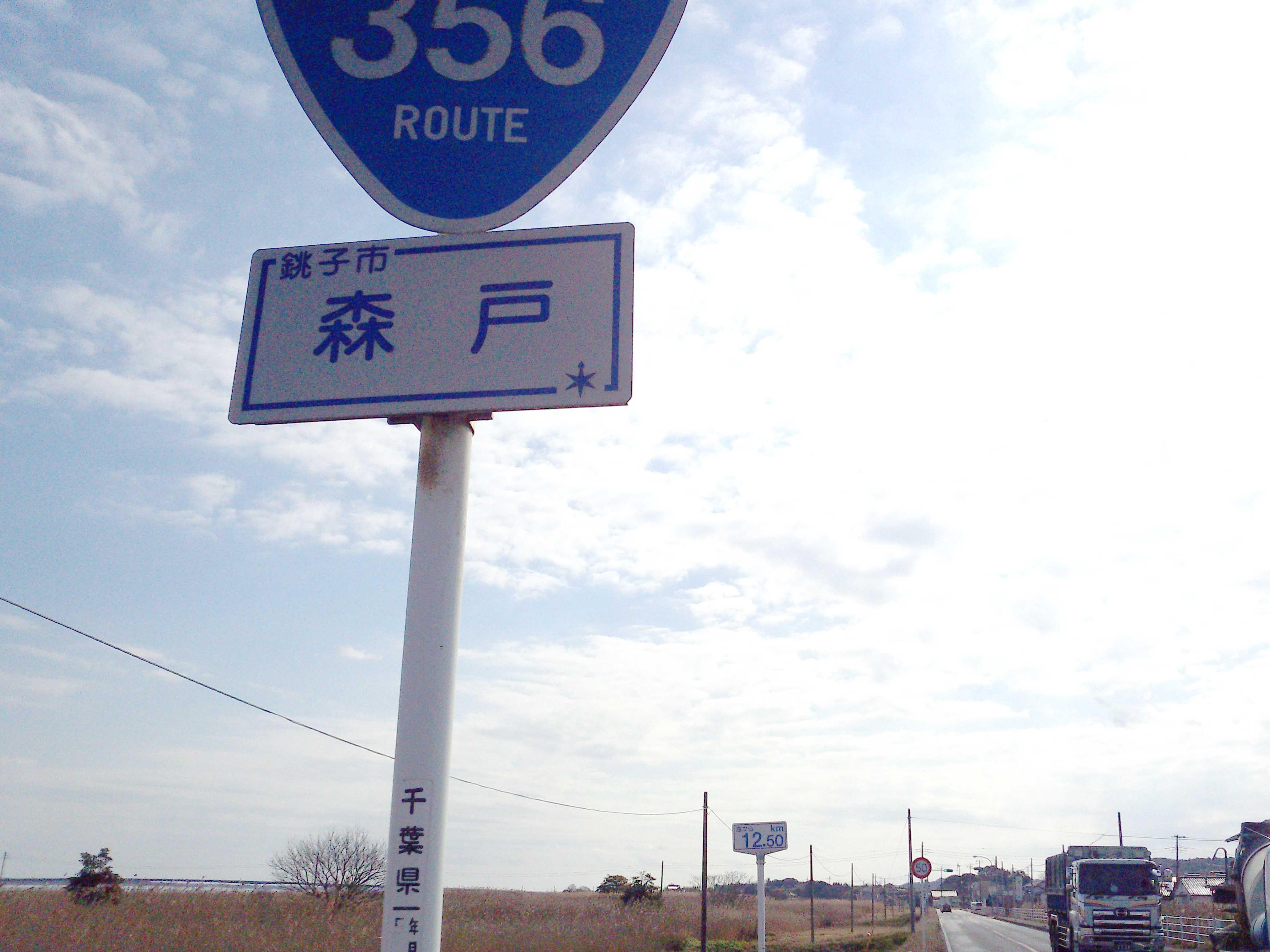 356.jpg