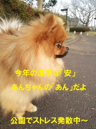 20151216160058c8d.jpg