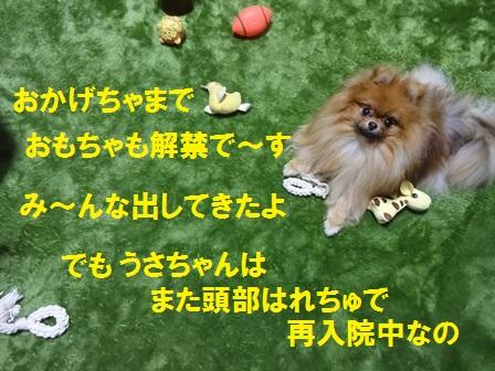 201602111235390b9.jpg