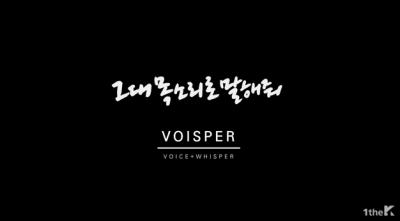 voiceper11.png