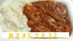 西友 みなさまのお墨付き ひよこ豆と野菜のチャナマサラカレー インスタントカレー 画像⑥