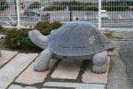 亀山八幡宮2