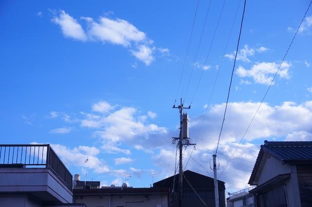 DSC02094.jpg