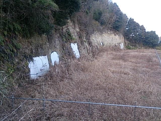131-11.jpg