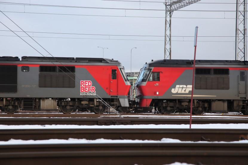 DF121IMG_1221-1.jpg