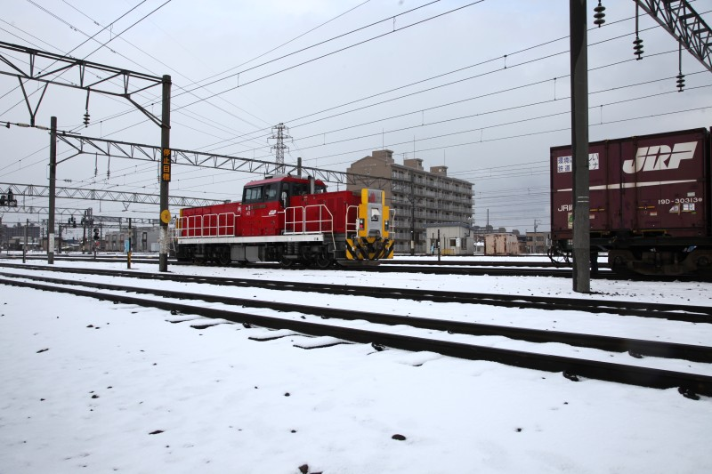 HD501IMG_1137-2.jpg