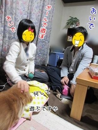 kinako4003.jpg