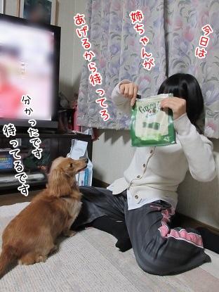 kinako4014.jpg