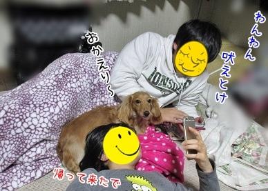 kinako4121.jpg