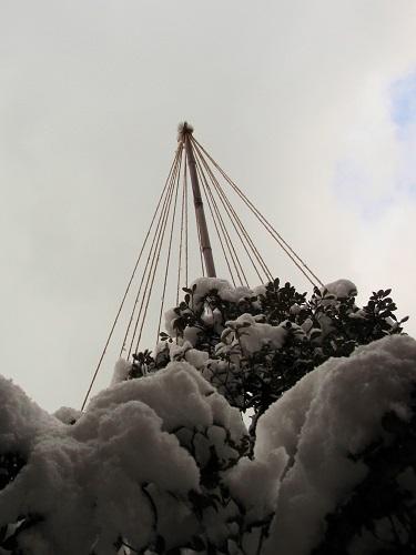 雪吊り160121