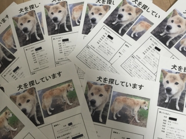 piyoko20160104-7.jpg