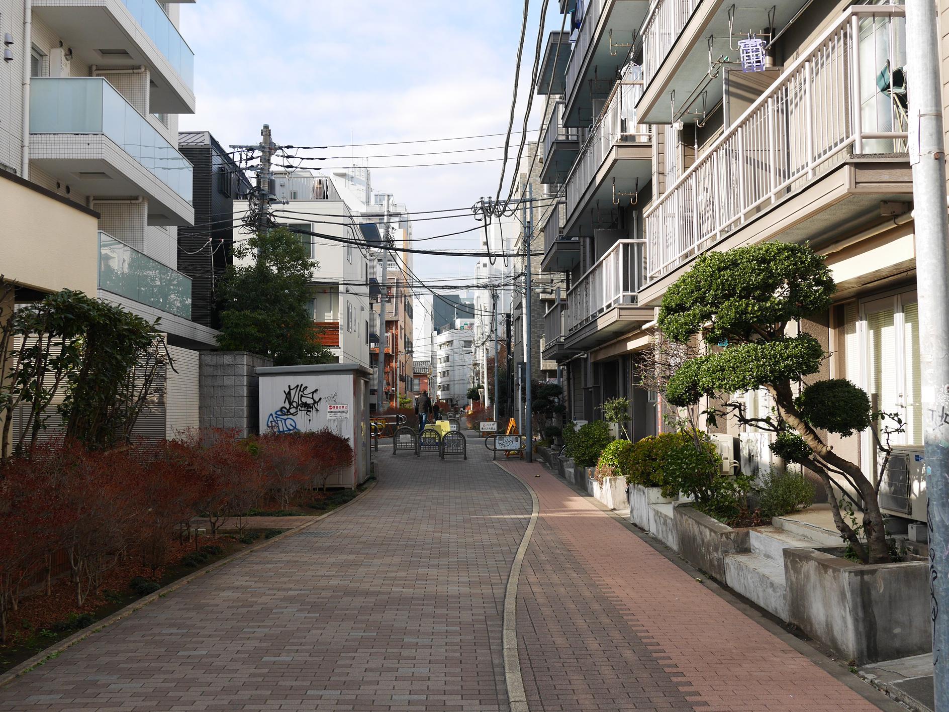 150111udagawaryokudo14.jpg