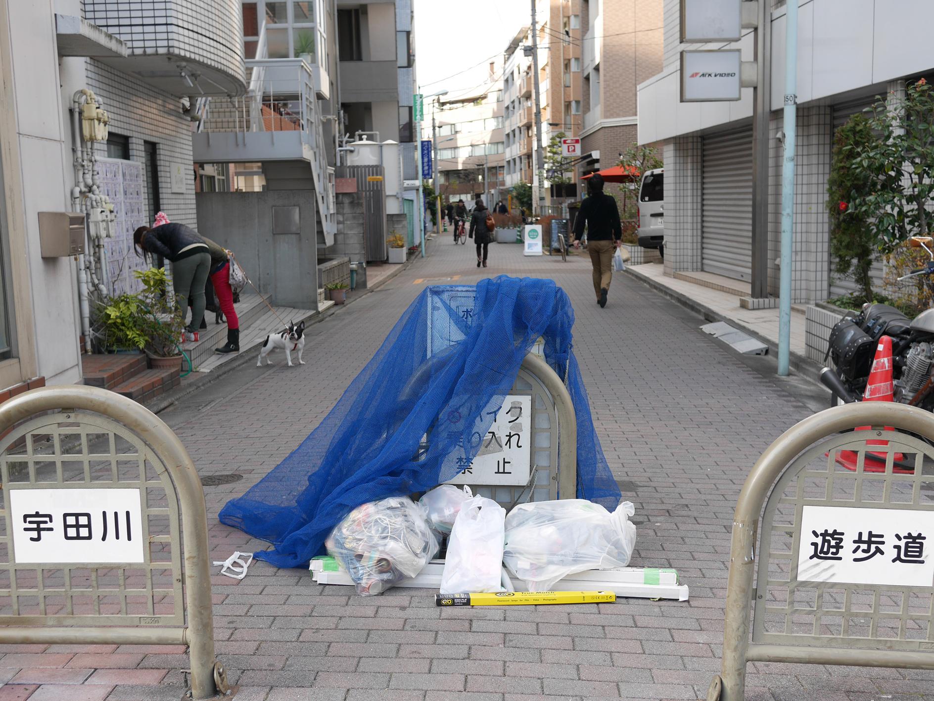 150111udagawaryokudo21.jpg