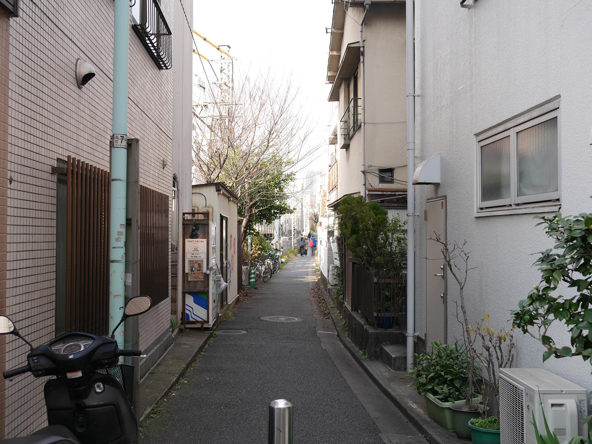 150111udagawaryokudo29.jpg