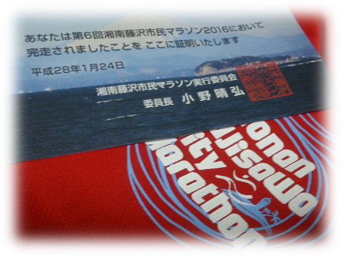 160125fujisawa5.png