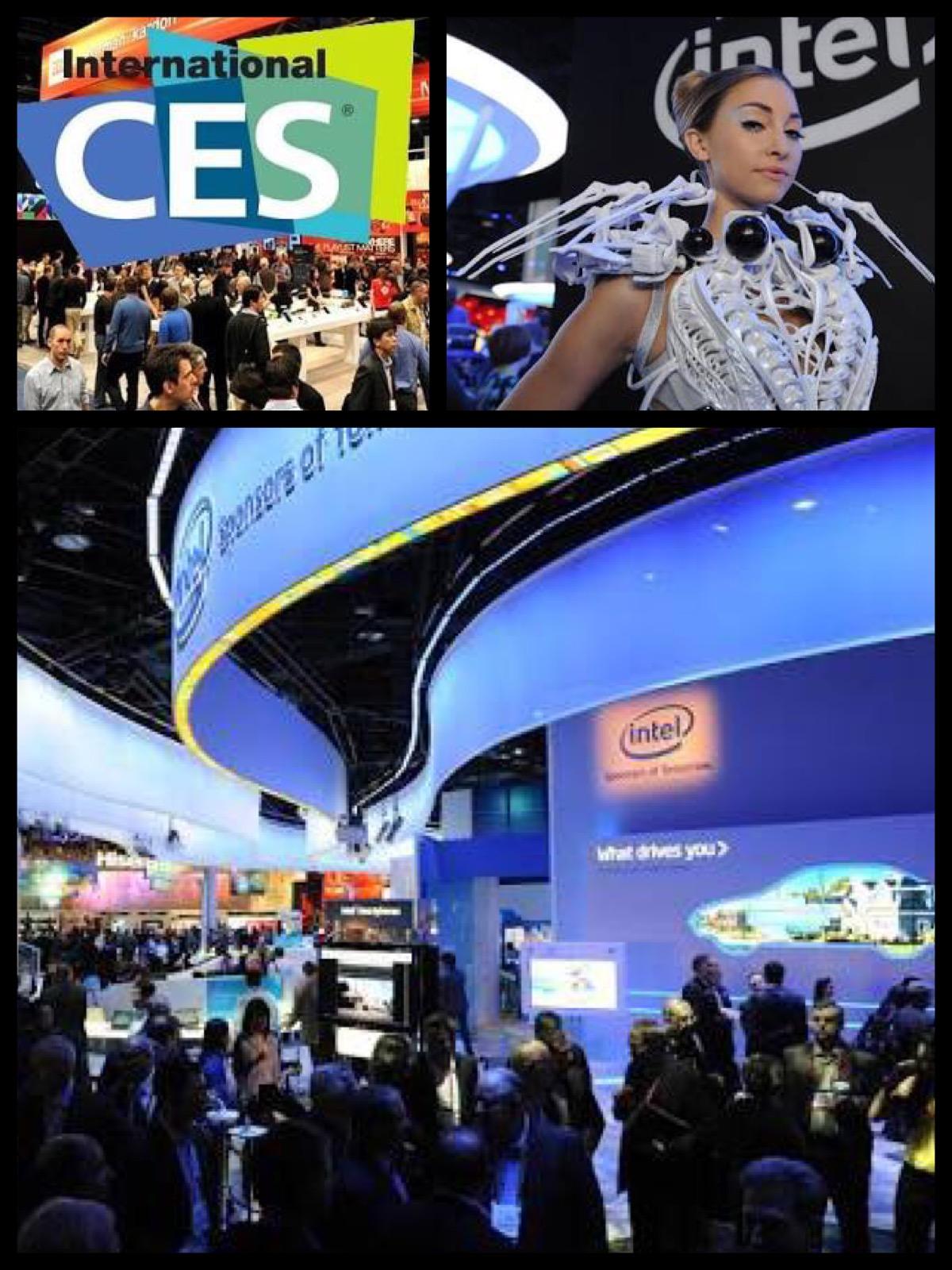 コンシューマー・エレクトロニクス・ショー (Consumer Electronics Show, CES)