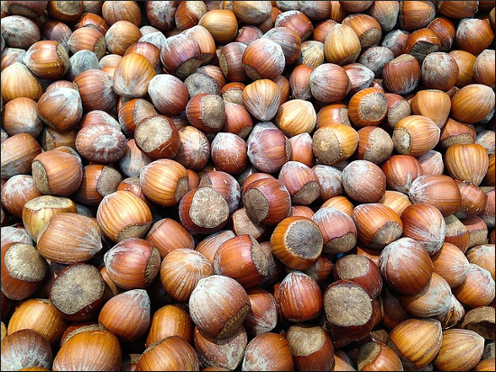 hazelnuts-1067577_640.jpg