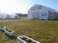 【写真】暖かな陽射しを受ける農園の様子