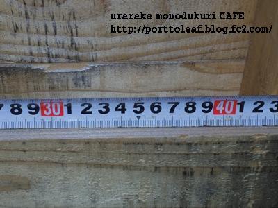 IMGP8834.jpg
