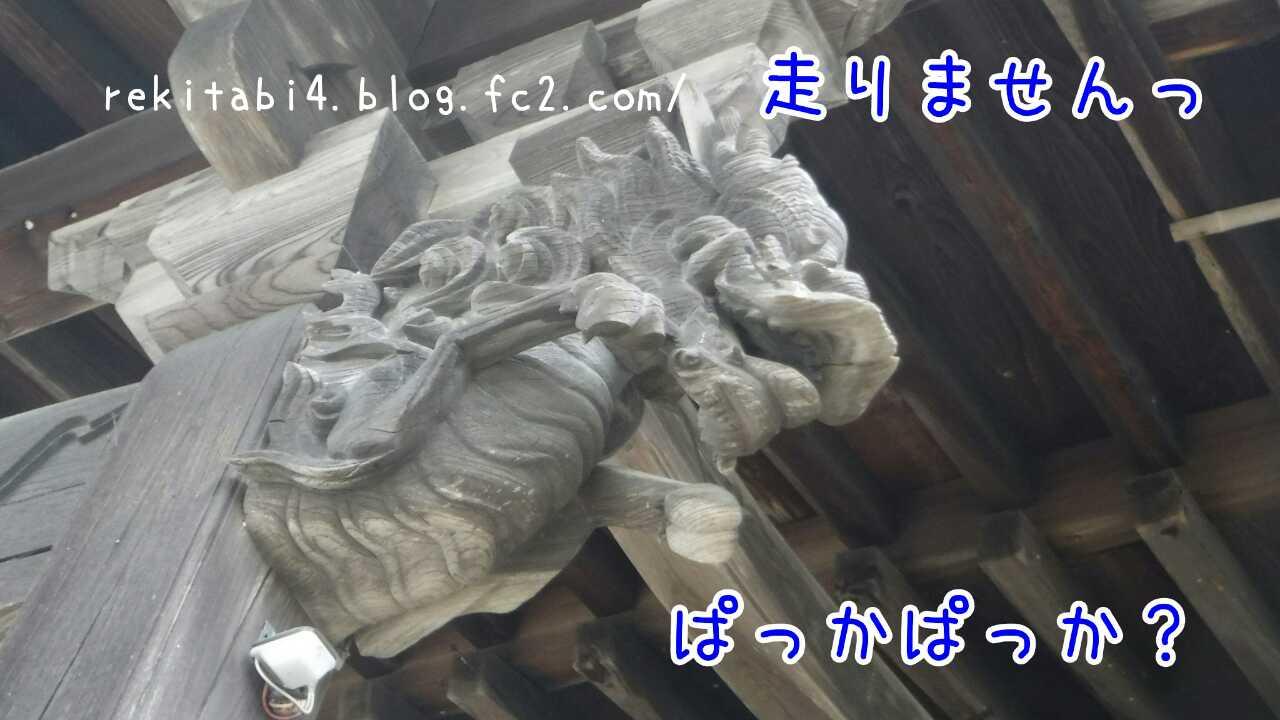 20151221205548923.jpg
