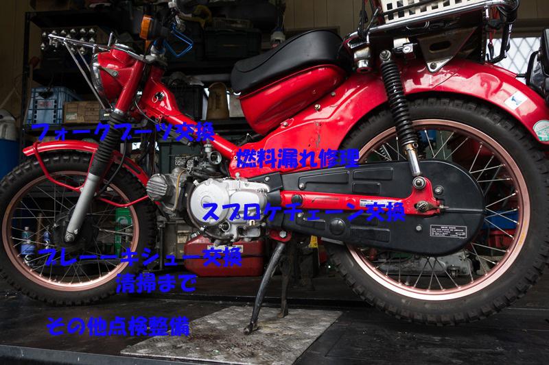 DSC06166-4のコピー
