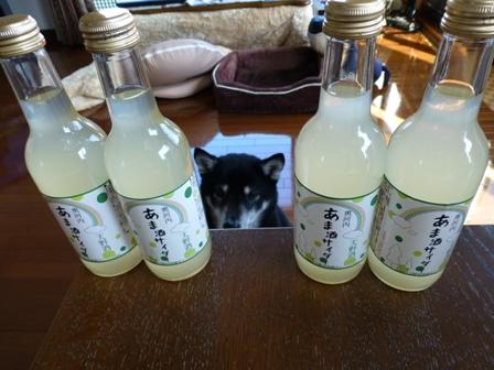 あま酒サイダー1