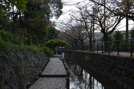 2015-11-07_29.jpg