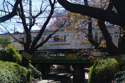 2015-12-05_22.jpg