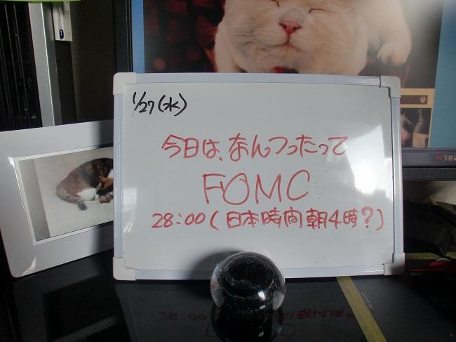 CIMG4700.jpg
