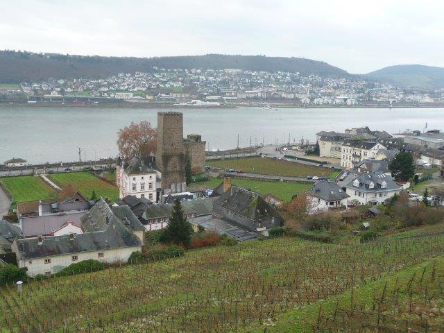 Rüdesheim, Blick von Seilbahn auf Burg, P1060573