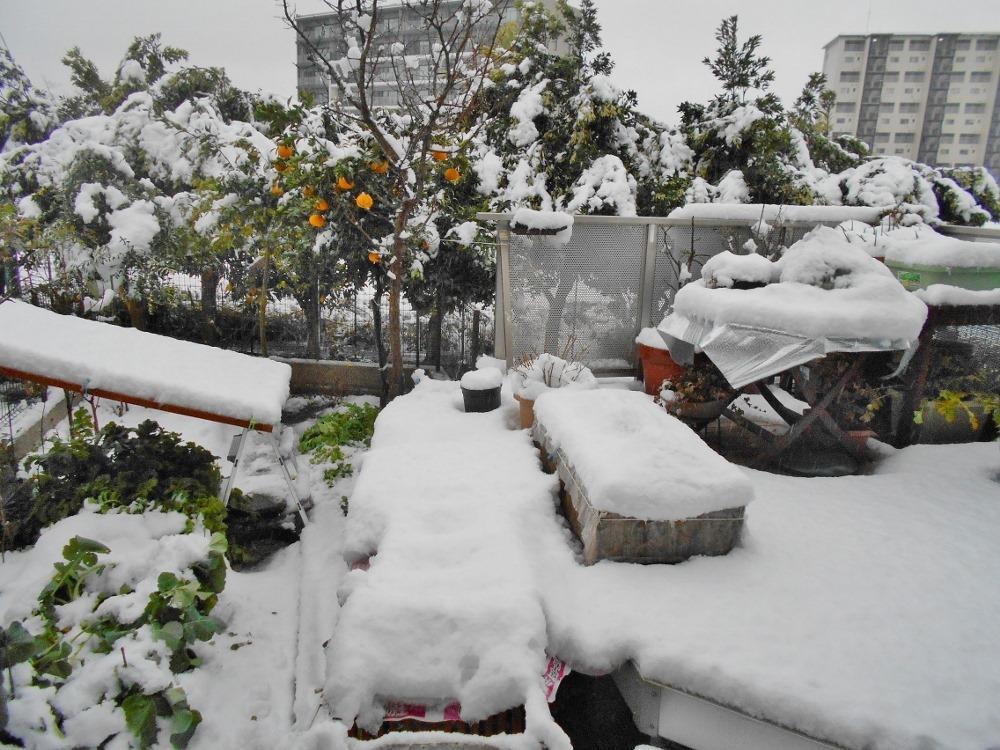 160118heavy_snow