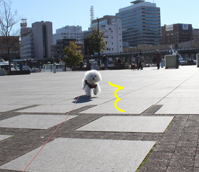 IMG_8324.jpg